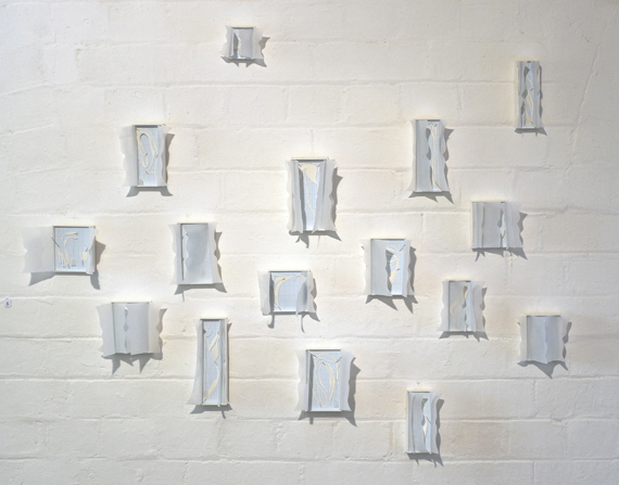 Untitled (boxed specimens), installation view, 2012