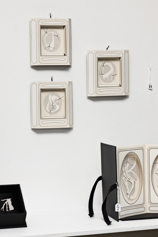 Treasured specimen 1, 2, 3, installation view, digital print on archival matte paper, cotton-rag paper, linen thread, 12.5cm x 12.5cm x 2cm each, 2010