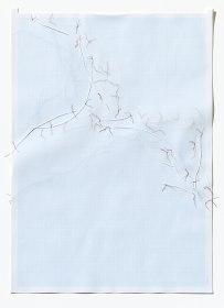 Untitled (form), panel 5, silk paper, graph paper, drafting film, cotton-rag paper, cotton thread, 59.5cm x 42cm, 2014