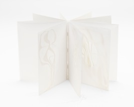 Untitled (transparent cabinet book), drafting film, cotton-rag paper, cotton thread, dimensions variable open, 22cm x 18cm closed, 2011-2012
