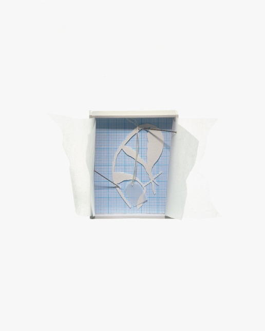Untitled (boxed specimen 1), mount board, acid-free tissue, graph paper, cotton-rag paper, stainless steel dressmaking pins, silk thread, tracing paper tag, 6.5cm x 5.3cm (11cm including 'curtains') x 2.5cm, 2012