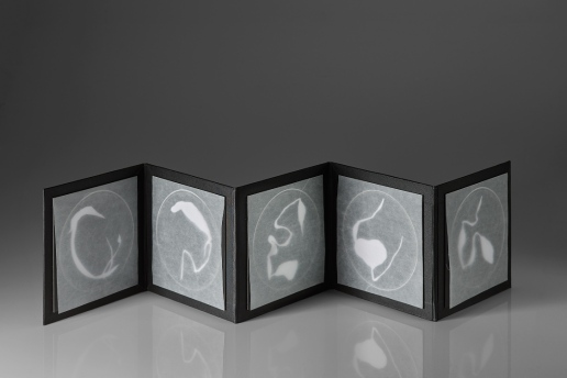 Untitled (unknown specimens photogram book 2), photograms on resin-coated paper with glassine, box board, mount board, 19.7cm x up to 98.5cm x .3cm open, 19.7cm x 19.7cm x 3cm closed, 2015