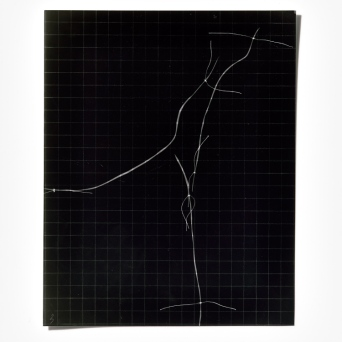 Untitled (written with light), panel 3, photogram on resin-coated paper, 25.4cm x 20.3cm, 2014