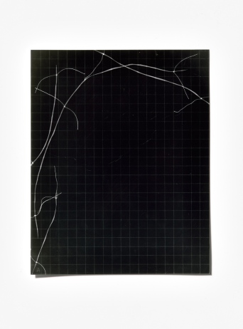 Untitled (written with light), panel 4, photogram on resin-coated paper, 25.4cm x 20.3cm, 2014