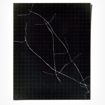 Untitled (written with light), panel 5, photogram on resin-coated paper, 25.4cm x 20.3cm, 2014