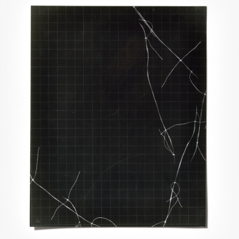 Untitled (written with light), panel 6, photogram on resin-coated paper, 25.4cm x 20.3cm, 2014