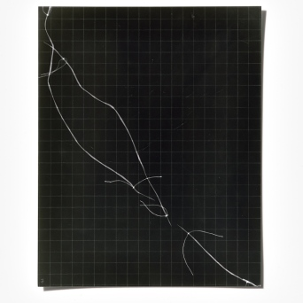 Untitled (written with light), panel 7, photogram on resin-coated paper, 25.4cm x 20.3cm, 2014