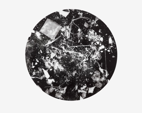 Unnatural Collection 1, photogram on resin coated photographic paper, 40.6cm x 50.8cm, 2016