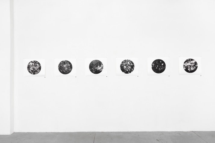 Unnatural Collection, photograms, 40.6x50.8cm each, installation view north wall, 2016
